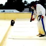 Polimocznik - Chłodne dachy