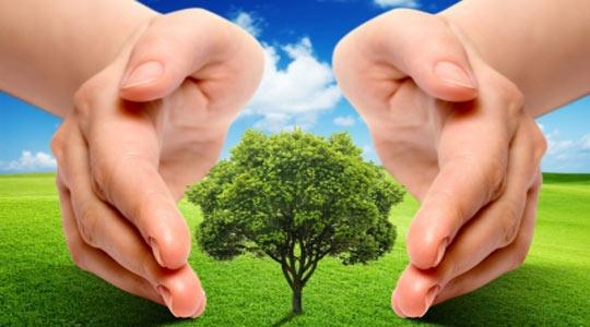 Polimocznik przyjazny dla środowiska